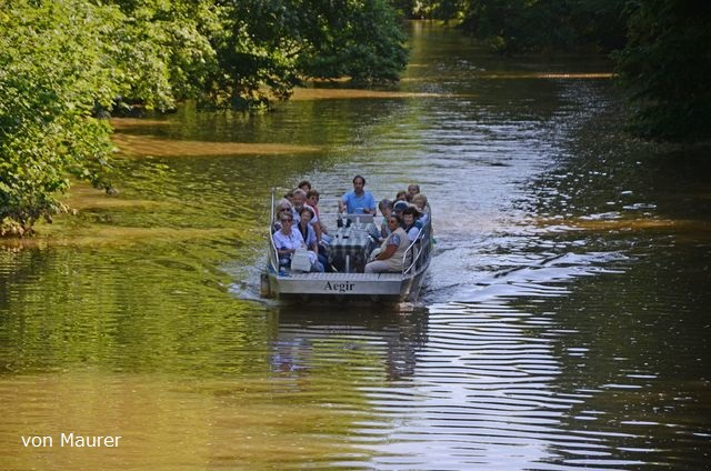 Motorbootfahrten Motorboottour Bootsverleih am Wildpark Bild 1