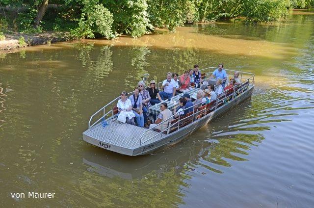 Motorbootfahrten Motorboottour Bootsverleih am Wildpark Bild 3